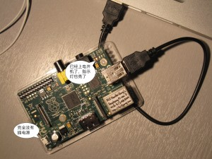 A Raspberry Pi rev2(512MB) board with power back-feed from USB.